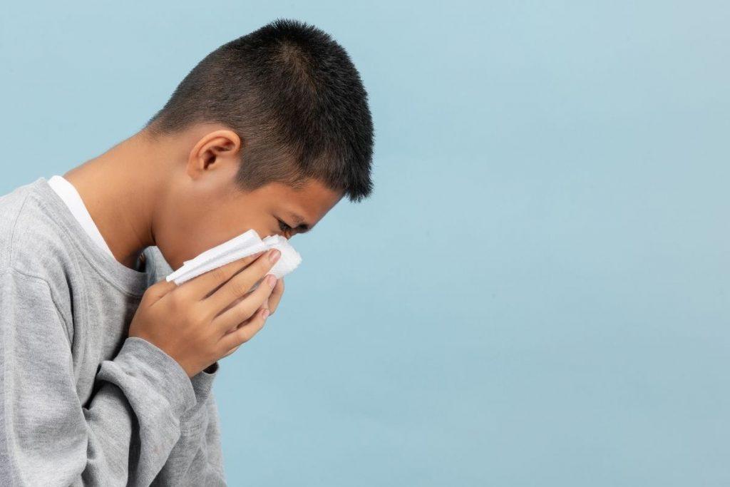alergias no inverno